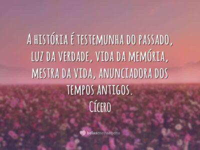Frases de História 2509