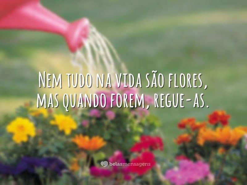 Nem tudo na vida são flores