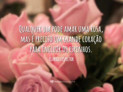 Qualquer um pode amar uma rosa