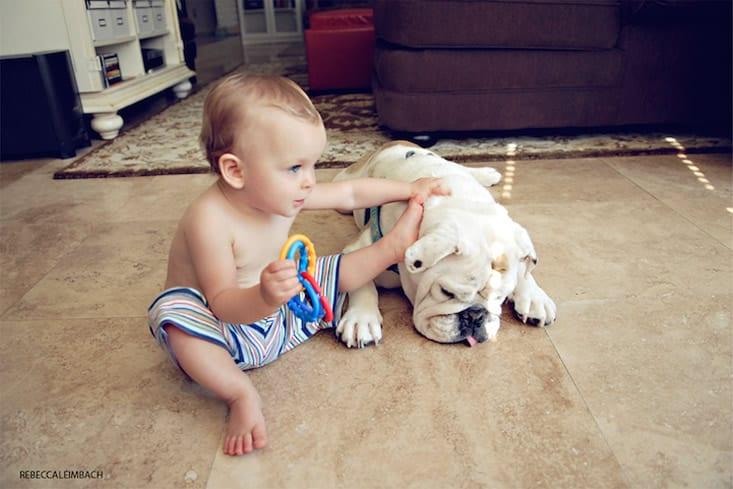 garotinha-e-bulldog-ingles-5