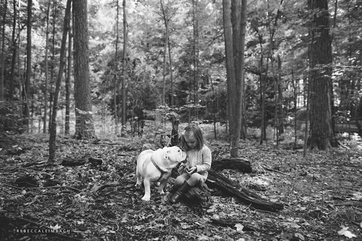 garotinha-e-bulldog-ingles-7