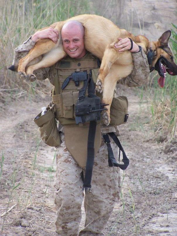 soldados-animais-12