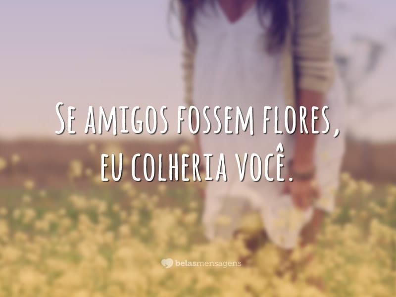 Como flores
