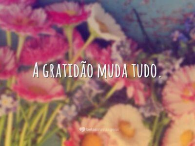 Poder da gratidão