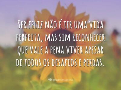 Ser feliz é reconhecer