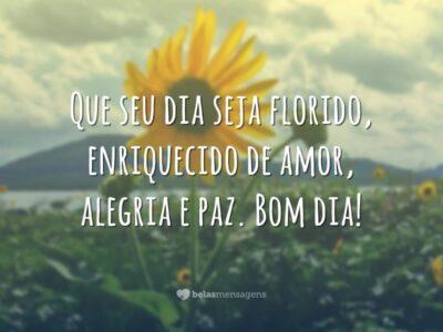 Desejo um dia florido
