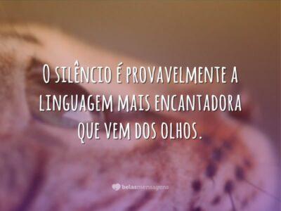 O silêncio é