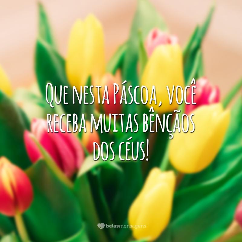 Que nesta Páscoa, você receba muitas bênçãos dos céus!
