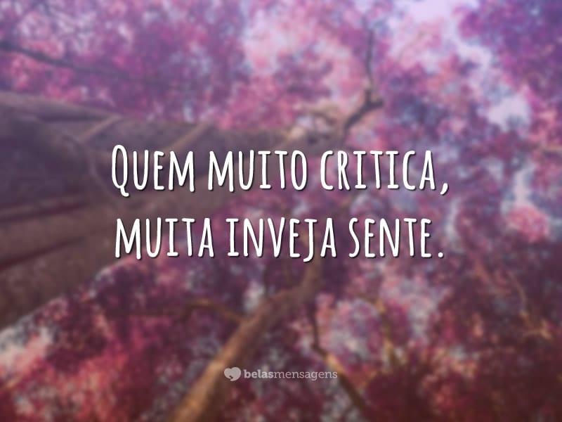 Quem muito critica