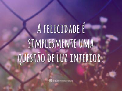 A felicidade é simplesmente