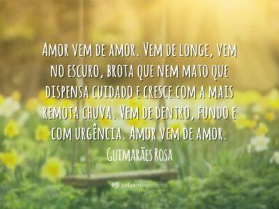 Amor vem de amor