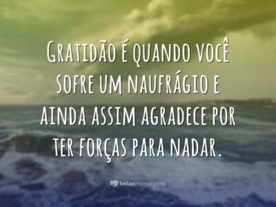 Gratidão é ter força