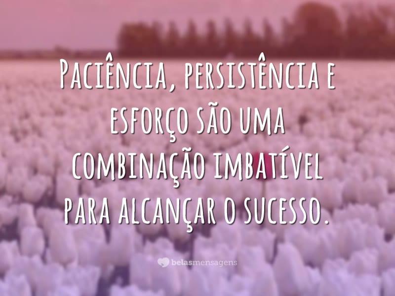 Paciência, persistência e esforço