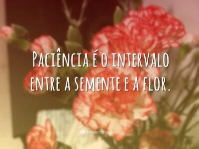 Paciência é o intervalo