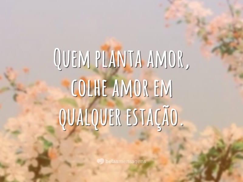 Quem planta amor