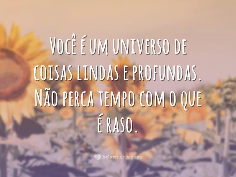 Você é um universo