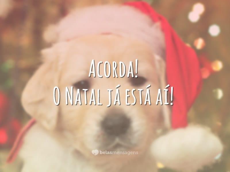 Acorda! O Natal já está aí!