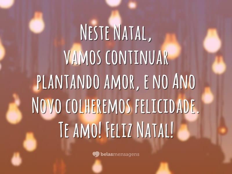 Neste Natal, vamos continuar plantando amor, e no Ano Novo colheremos felicidade. Te amo! Feliz Natal!