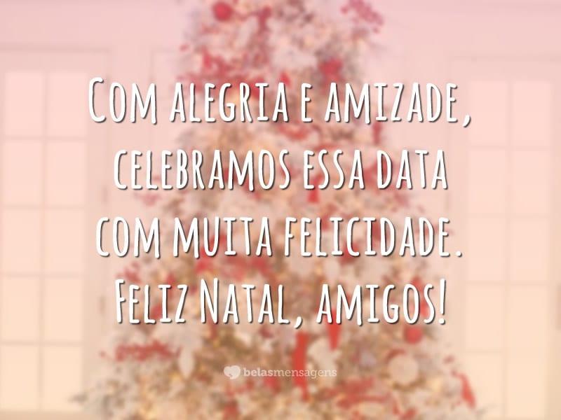 Com alegria e amizade, celebramos essa data com muita felicidade. Feliz Natal, amigos!