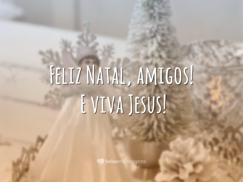 Feliz Natal, amigos! E viva Jesus!