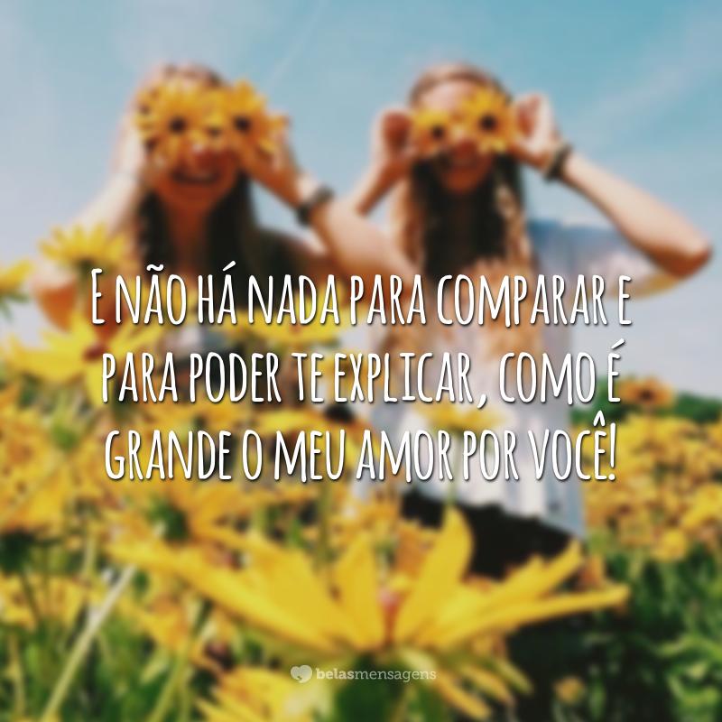 E não há nada para comparar e para poder te explicar, como é grande o meu amor por você!