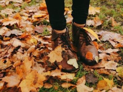 51 frases de outono para se apaixonar pela estação de renovação