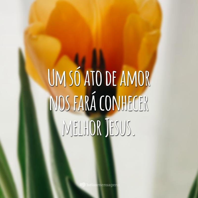 Um só ato de amor nos fará conhecer melhor Jesus.