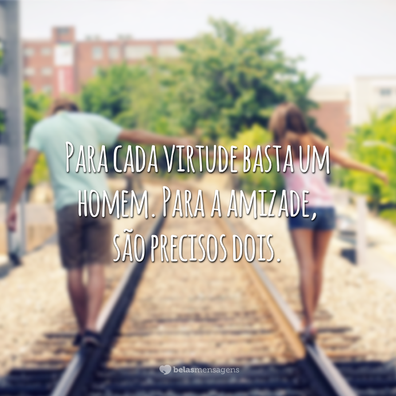 Para cada virtude basta um homem. Para a amizade, são precisos dois.