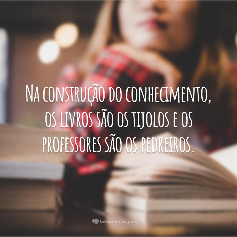 Na construção do conhecimento, os livros são os tijolos e os professores são os pedreiros.