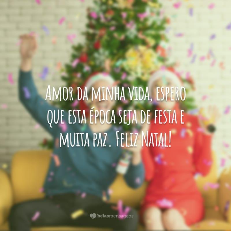 Amor da minha vida, espero que esta época seja de festa e muita paz. Feliz Natal!