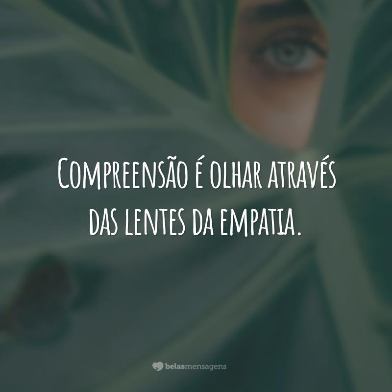 Compreensão é olhar através das lentes da empatia.