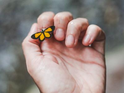 40 frases para acalmar o coração e abraçar a tranquilidade