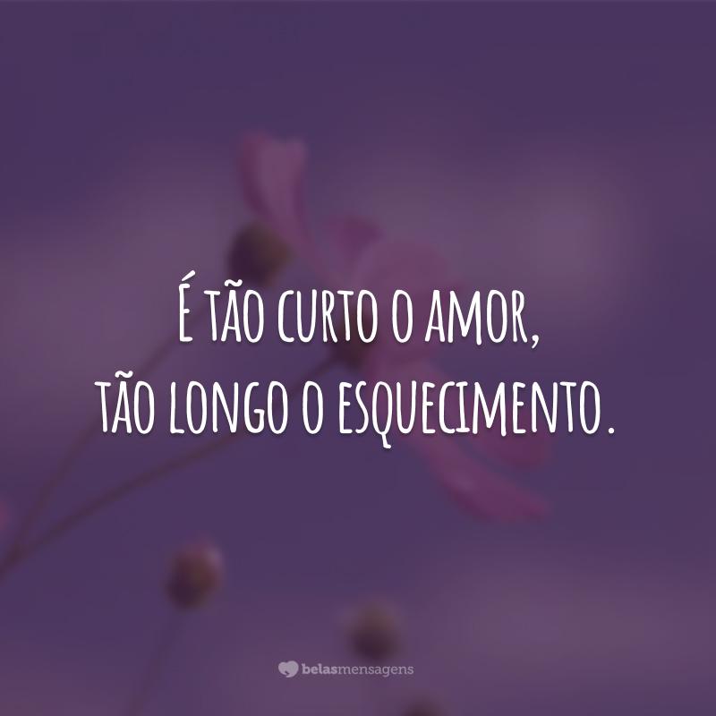 É tão curto o amor, tão longo o esquecimento.