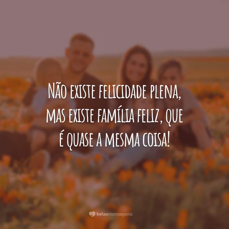 Não existe felicidade plena, mas existe família feliz, que é quase a mesma coisa!