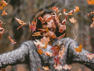 40 frases de bem-vindo, outono, para receber a estação da transformação
