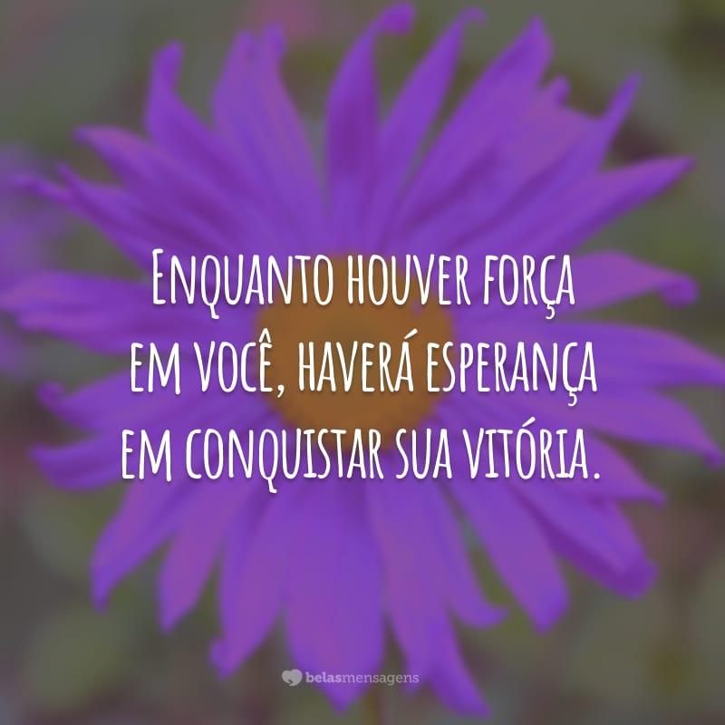 Enquanto houver força em você, haverá esperança em conquistar sua vitória.