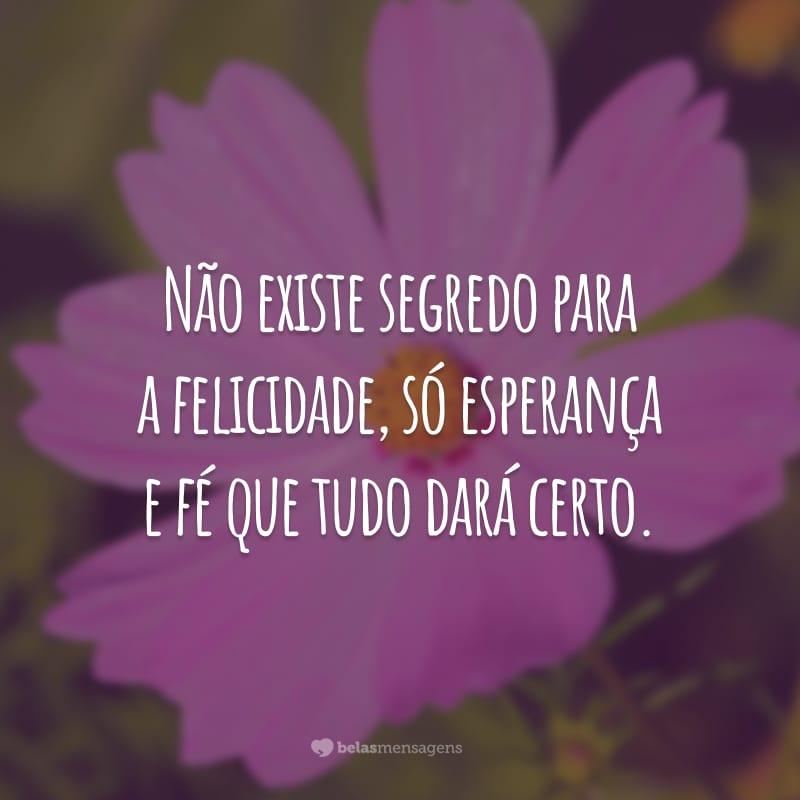 Não existe segredo para a felicidade, só esperança e fé que tudo dará certo.