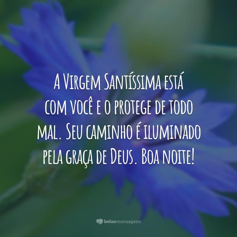 A Virgem Santíssima está com você e o protege de todo mal. Seu caminho é iluminado pela graça de Deus. Boa noite!