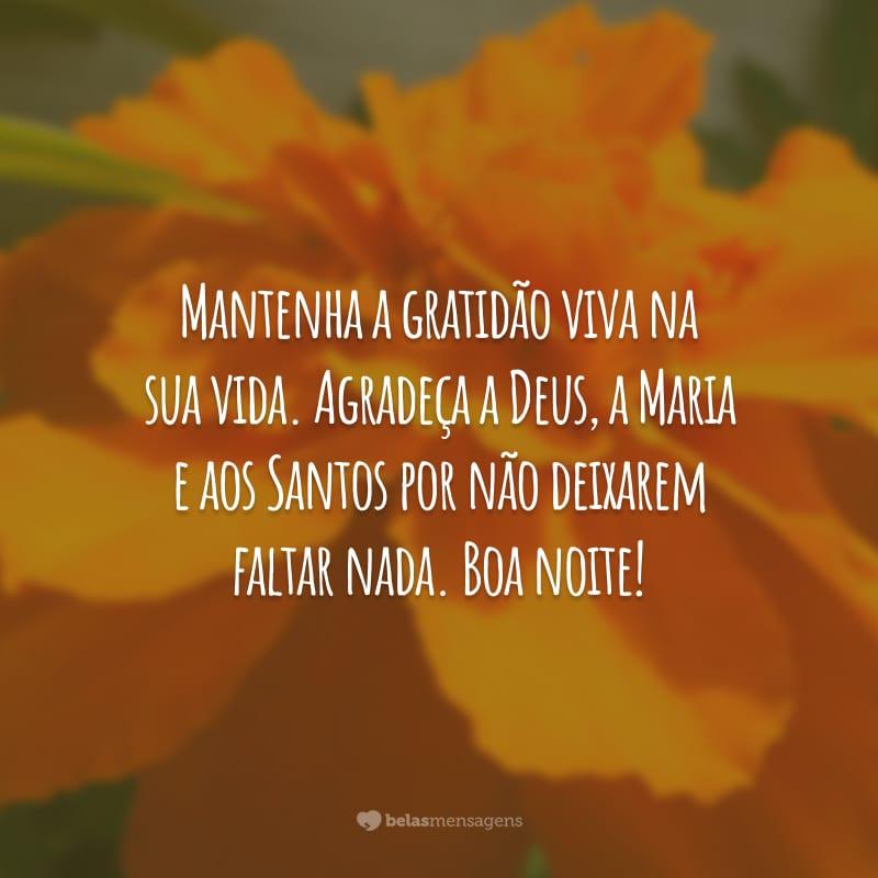 Mantenha a gratidão viva na sua vida. Agradeça a Deus, a Maria e aos Santos por não deixarem faltar nada. Boa noite!